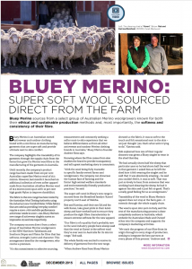 Bluey Merino Article